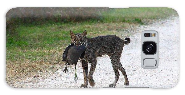 Florida Bobcat Catches An Evening Snack Galaxy Case