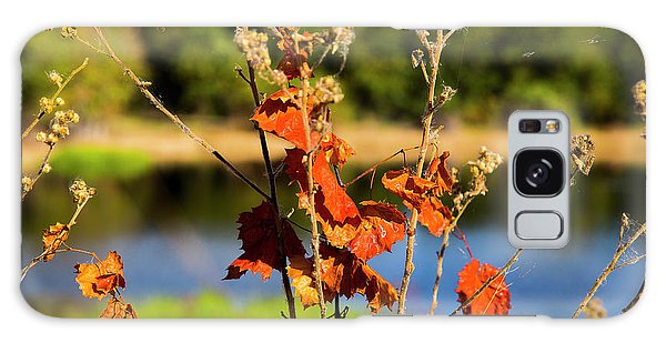 Florida Fall Leaves Galaxy Case