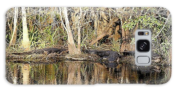 Florida Gators - Everglades Swamp Galaxy Case