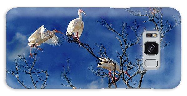 Ibis Galaxy Case - Florida Keys The Exaggerated Ibis by Betsy Knapp