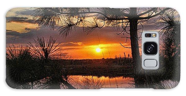 Bradenton Galaxy Case - Florida Pine Sunset by HH Photography of Florida