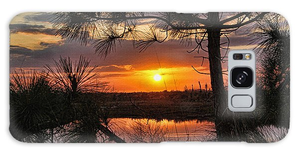 Florida Pine Sunset Galaxy Case by HH Photography of Florida