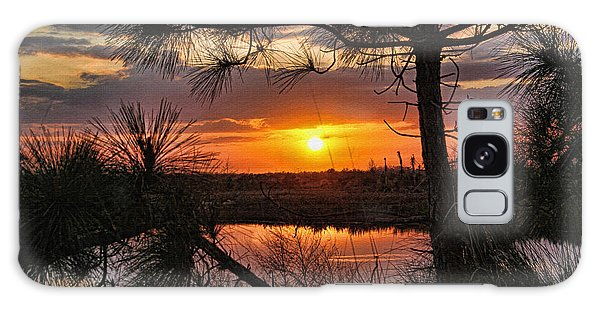 Florida Pine Sunset Galaxy Case