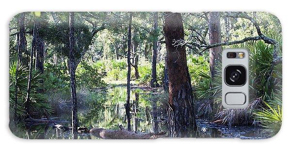 Florida Swamp Galaxy Case by Kenneth Albin