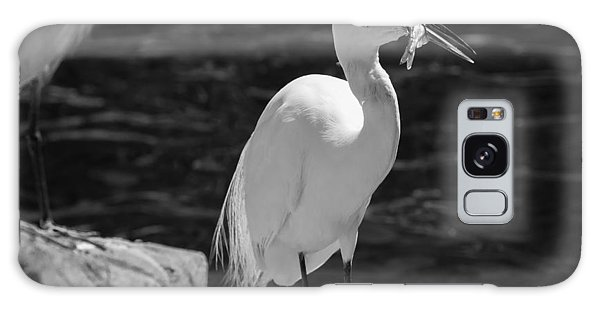Florida White Egret Galaxy Case by Jason Moynihan
