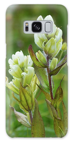 Galaxy Case featuring the photograph Flower-2-11x14 by Kate Avery