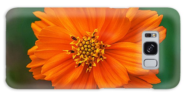 Flower Color Galaxy Case by Edward Peterson