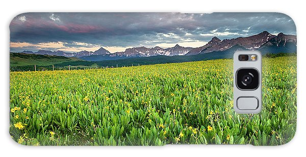 Flower Field And Sneffels Range Galaxy Case