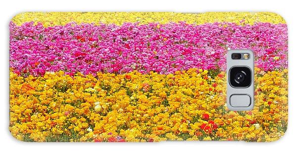 Flower Fields Carlsbad Ca Giant Ranunculus Galaxy Case