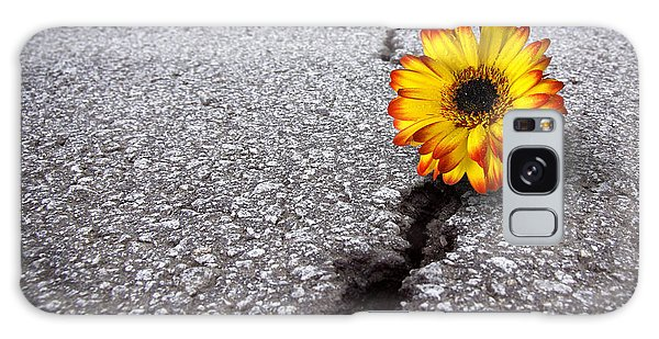 Flower In Asphalt Galaxy Case by Carlos Caetano