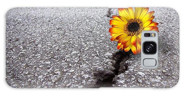 Flower In Asphalt Galaxy Case