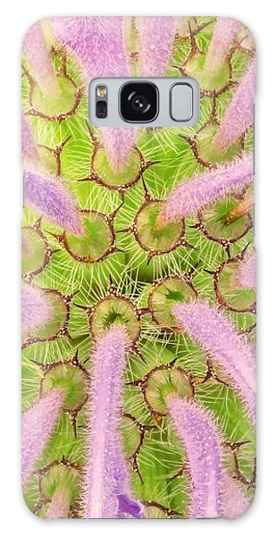 Flower Interior, Wild Bergamot Or  Bee Balm Galaxy Case by Jim Hughes