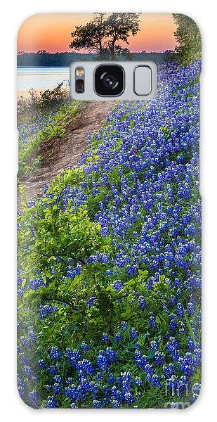 Flower Mound Galaxy Case