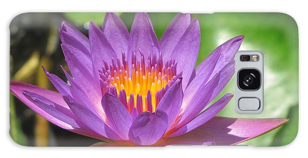 Flower Of The Lilly Galaxy Case