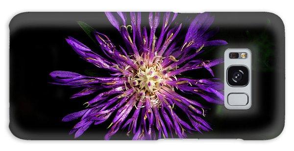 Flower Or Firework Galaxy Case
