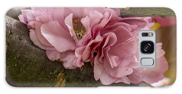 Flowering Almond I Galaxy Case
