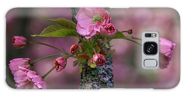 Flowering Almond Iv Galaxy Case