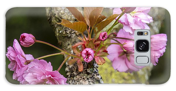 Flowering Almond V Galaxy Case