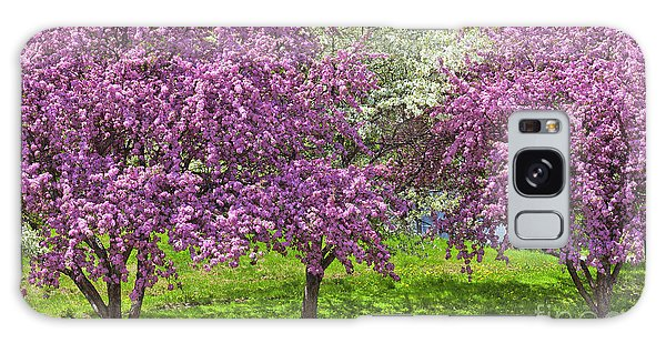 Flowering Crabapples Galaxy Case
