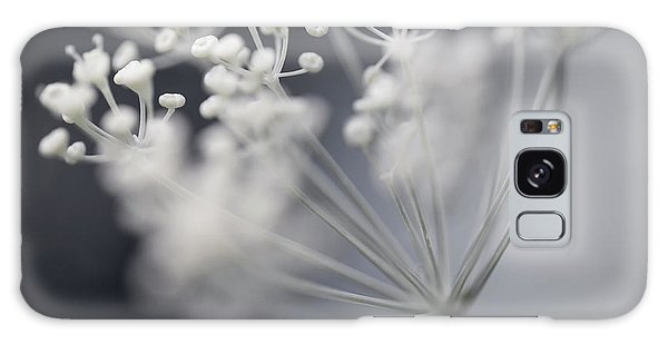 Galaxy Case featuring the photograph Flowering Dill Cluster by Elena Elisseeva