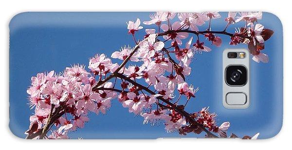 Flowering Of The Plum Tree 4 Galaxy Case
