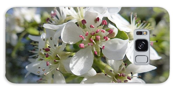 Flowering Of White Flowers 2 Galaxy Case