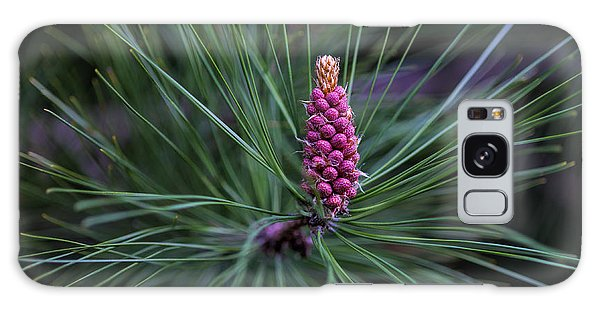 Flowering Pine Cone Galaxy Case