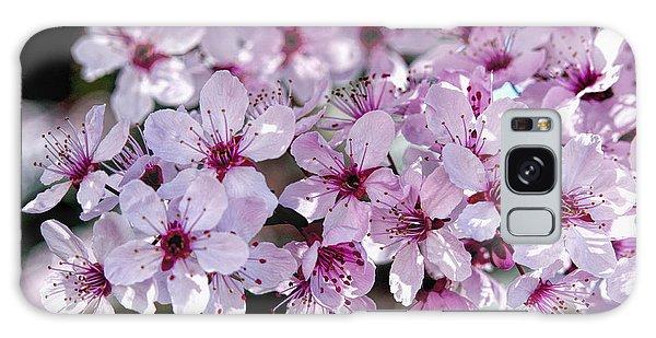 Flowering Plum Galaxy Case