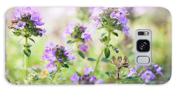Galaxy Case featuring the photograph Flowering Thyme by Elena Elisseeva