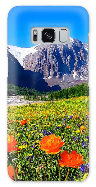 Flowering Valley. Mountain Karatash Galaxy Case