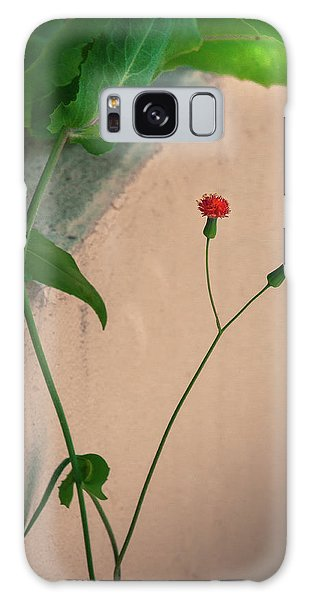 Flowers, Leaves And Wall Galaxy Case