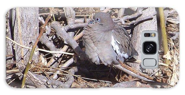 Fluffy Dove Galaxy Case