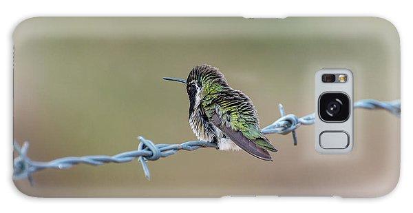Fluffy Hummingbird Galaxy Case