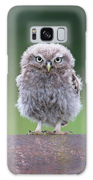Fluffy Little Owl Owlet Galaxy Case
