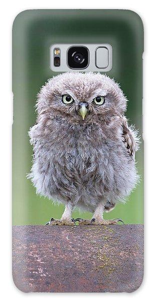Fluffy Little Owl Owlet Galaxy Case