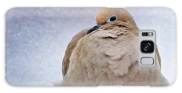 Fluffy Mourning Dove Galaxy Case