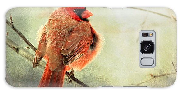 Fluffy Winter Cardinal Galaxy Case