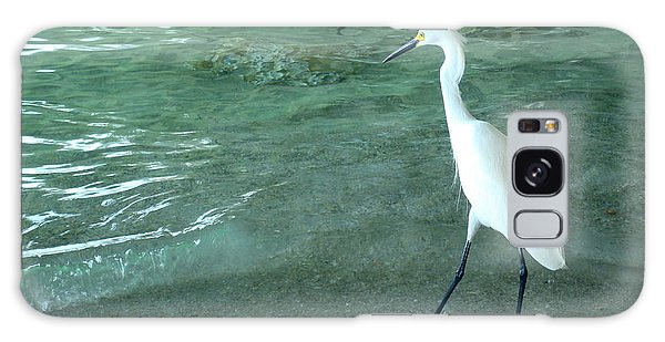 Egret Under Bridge Galaxy Case