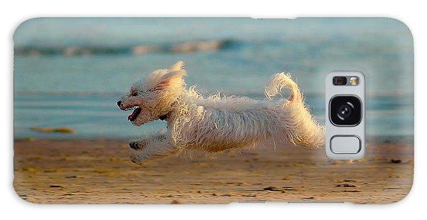 Flying Dog Galaxy Case