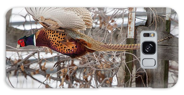Galaxy Case featuring the photograph Flying Pheasant by Wesley Aston
