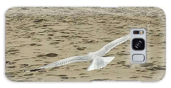 Flying Seagull Galaxy Case