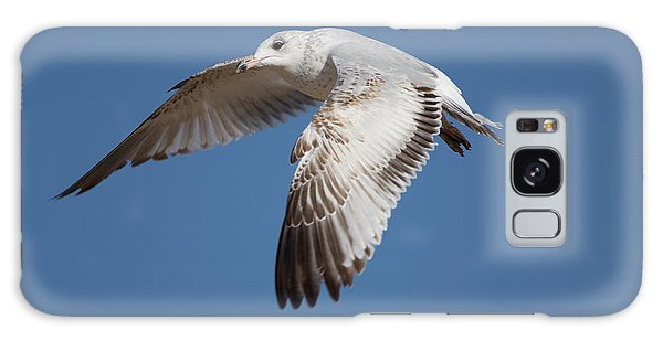 Flying Seagull Galaxy Case