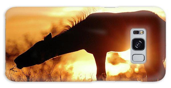 Galaxy Case - Foal Silhouette by Shawn Hamilton