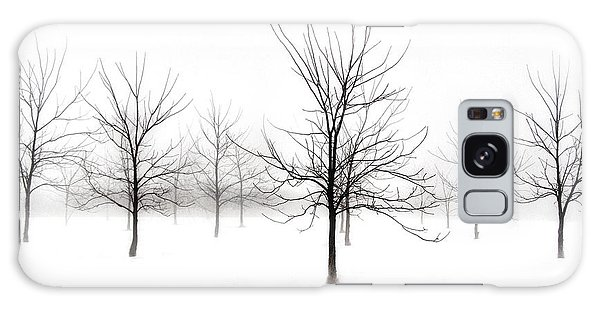 Fog And Winter Black Walnut Trees  Galaxy Case