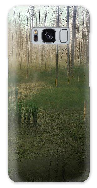 Fog In The Marsh Galaxy Case