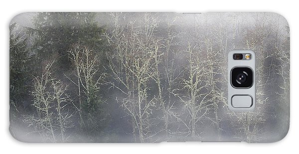 Foggy Alders In The Forest Galaxy Case