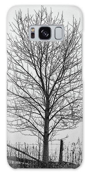 Foggy Lone Tree Hill Fine Art Galaxy Case