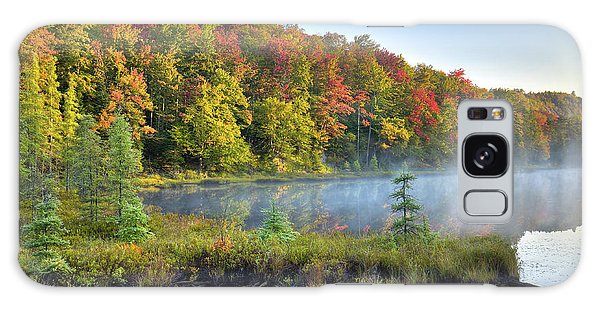 Galaxy Case featuring the photograph Foggy Morning On The Pond by David Patterson