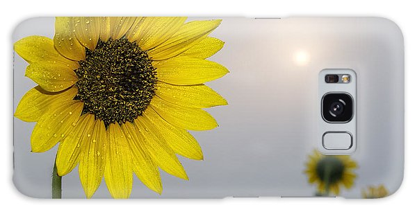 Foggy Sunflowers Galaxy Case