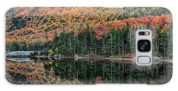 foliage at dawn on Beaver pond Galaxy Case